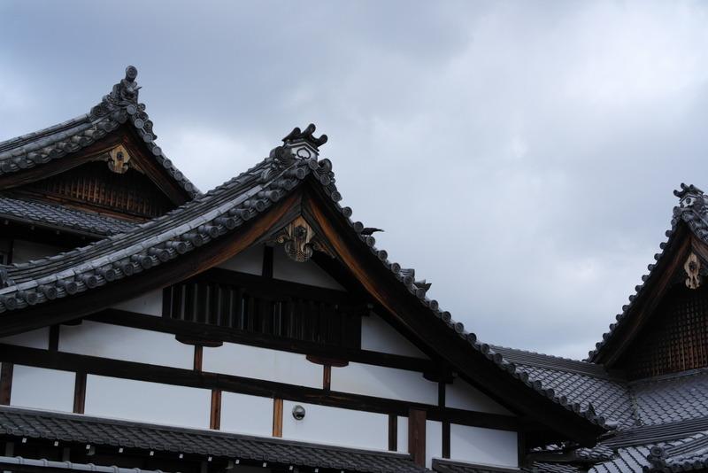 020-prachtige-daken