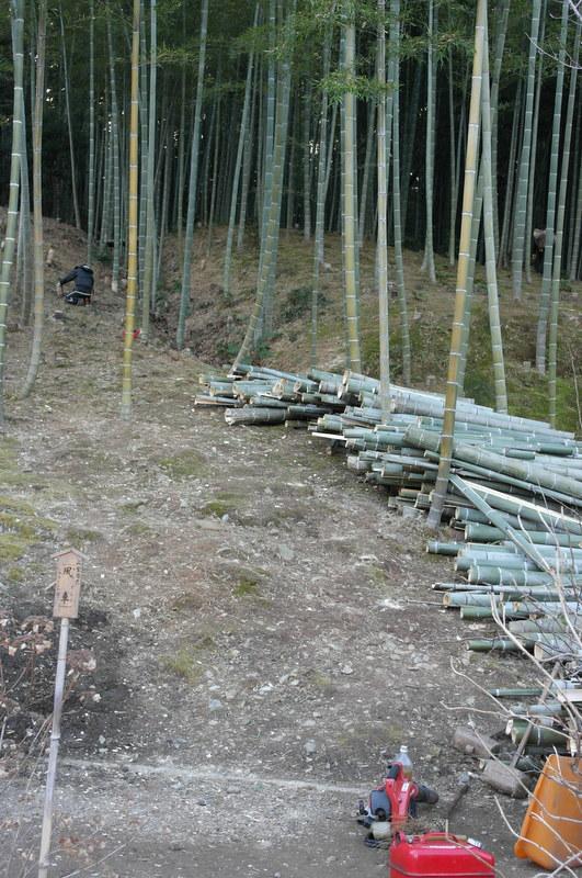 116-onderhoud-bij-bamboo-grove