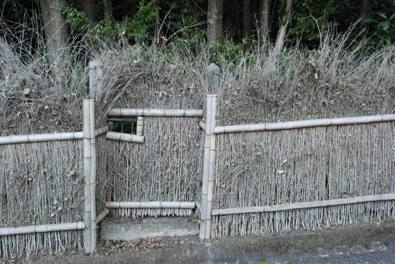 120-tuinhekje-bamboo