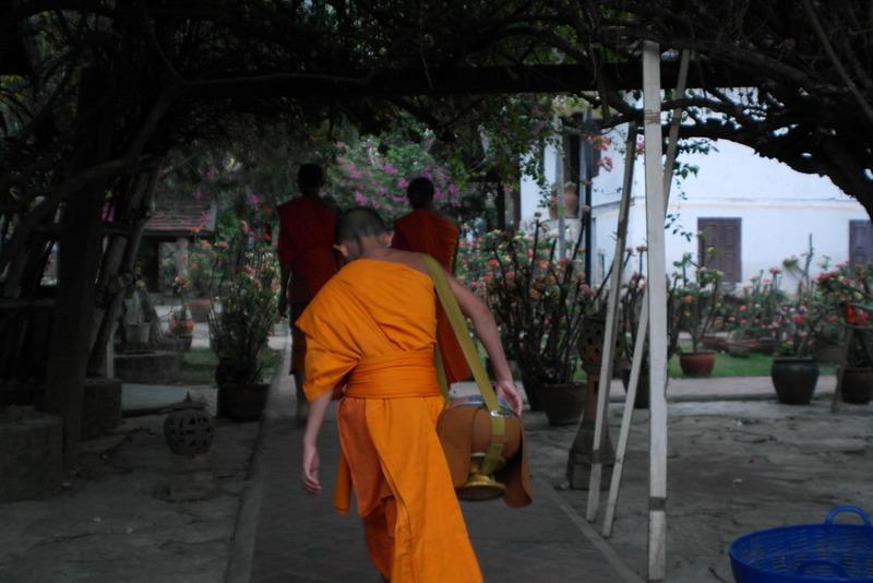 30-terug-binnen-hun-tempel-domein