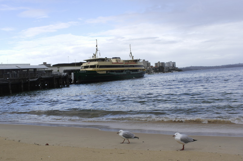 05-onze-ferry-in-manly-cove