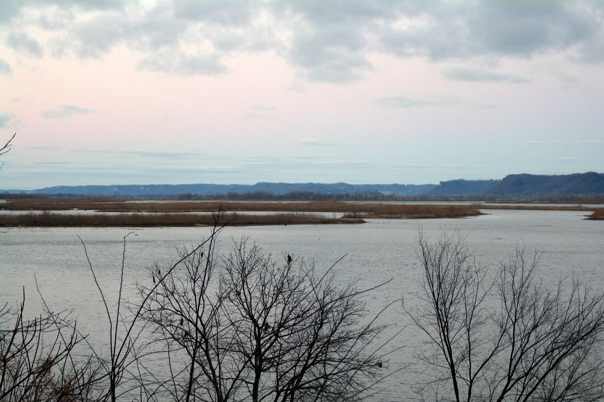 Mississippi River - eilandjes broedplaats voor vele watervogels