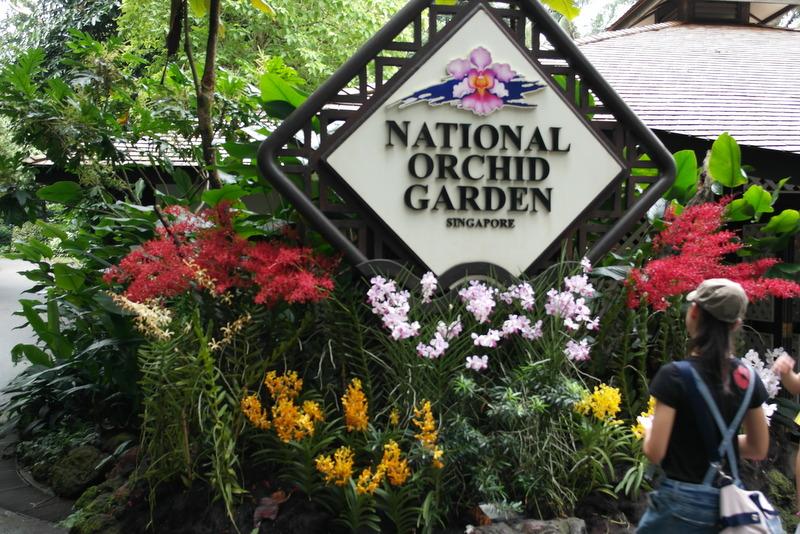 118-bezoek-aan-national-orchid-garden