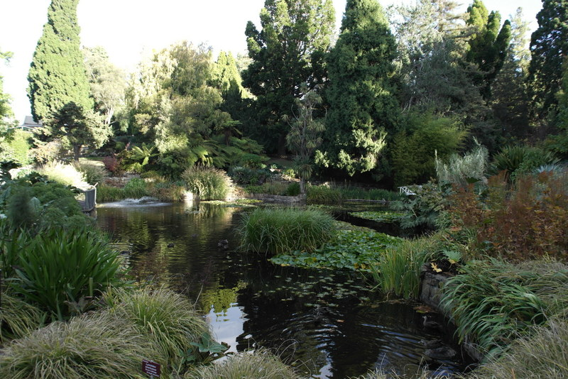 211-in-de-royal-tasmanian-botanical-garden-hobart