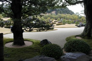 02 The white Gravel and Pine Garden
