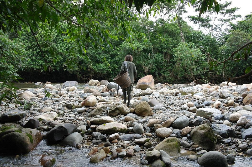 05 de plantage ligt achter de rivier