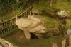 26 afbeelding van een kikker die wijst in de richting van de Bron van Lavapatas