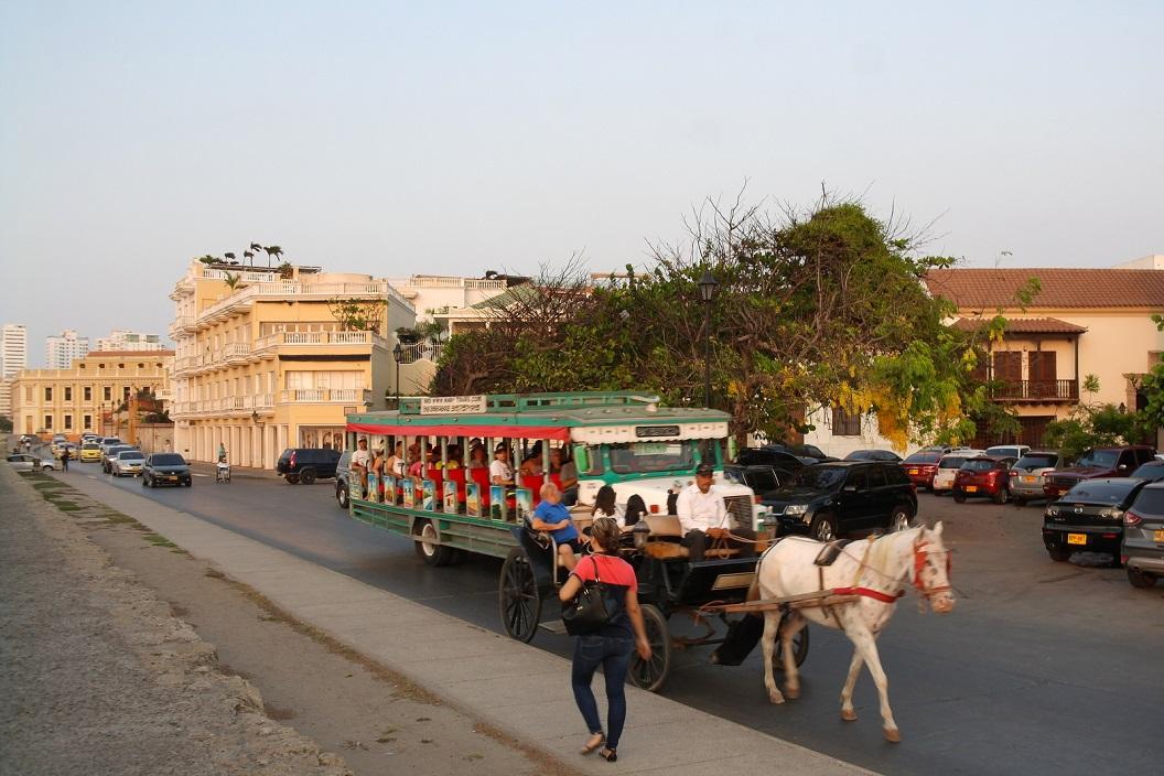 21 stads tour per paard en bus