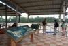 15 informatie over de natuur en mogelijkheden in het Amazonegebied in directe omgeving
