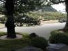 02-the-white-gravel-and-pine-garden