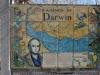 50 Tegelpaneel met de route van Darwin Camines de Darwin