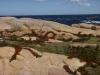 31 prachtige kust