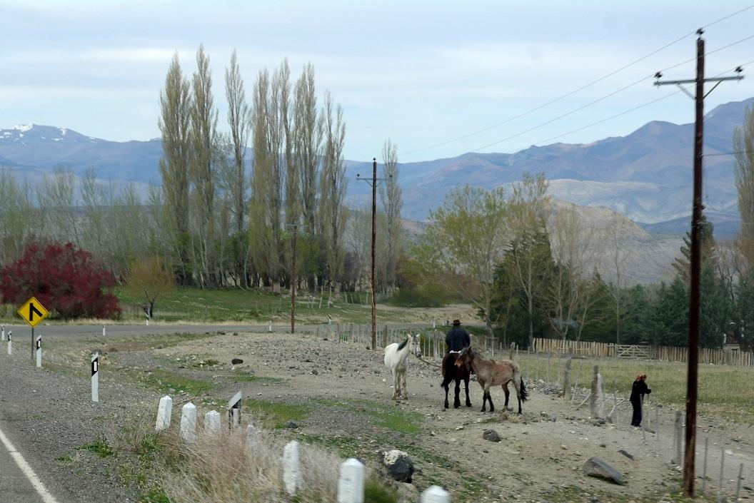 moeders sluit het hek en vertrekken daarna samen te paard