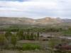 voorjaarsgroen zorgt voor een prachtige kleurrijke omgeving
