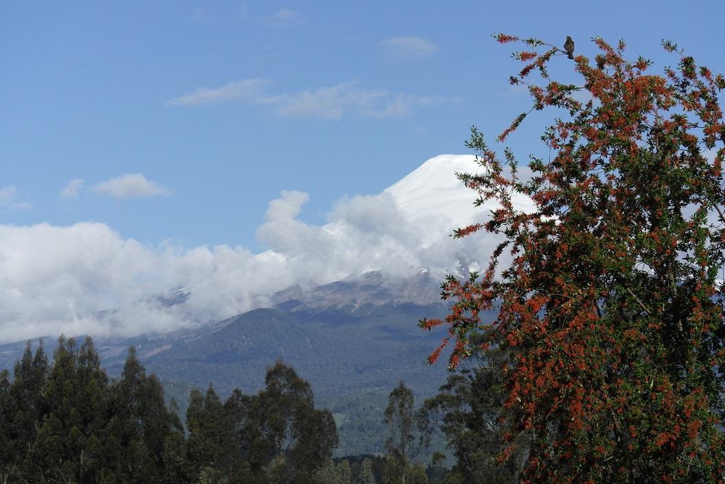 28 zicht op Volcan Osorno vanuit Las Cascades