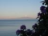 02 aan de overzijde van het meer, Lago Llanquihue, zicht op Vulcan Osorno