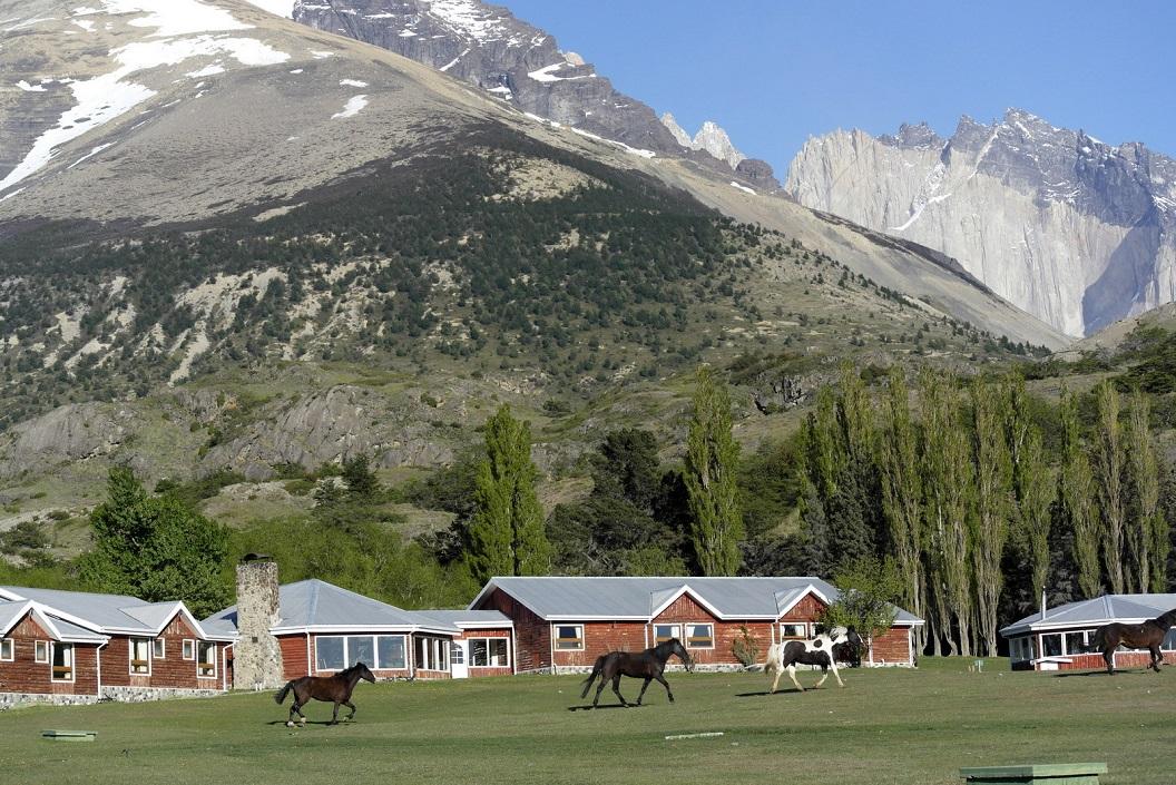 17 paarden in draf op weg nar hun stal bij Hotel Las Torres