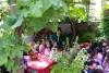 35 met de hele klas een kijkje in het achtertuin van het Broederhuis