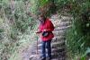 49 een afdaling door het tropisch regenwoud