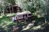 08 we kamperen in de tuin van het centrum, Wim kijkt omhoog naar de boomhut