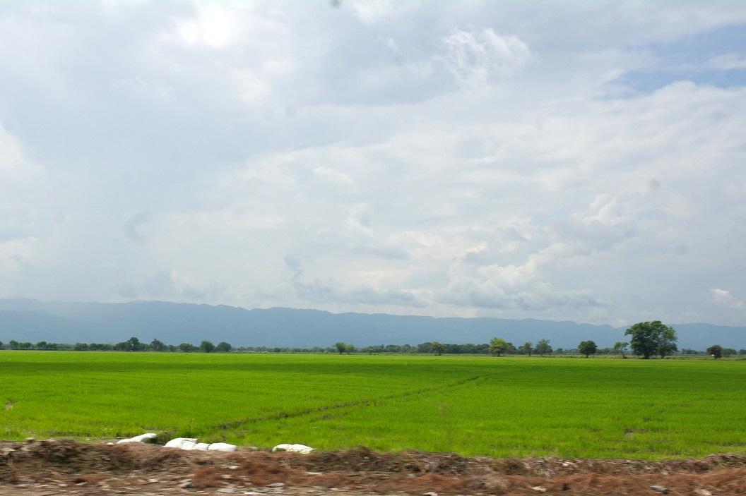 02 zelfs uitgestrekte rijstvelden, op weg via Neiva naar Medellin