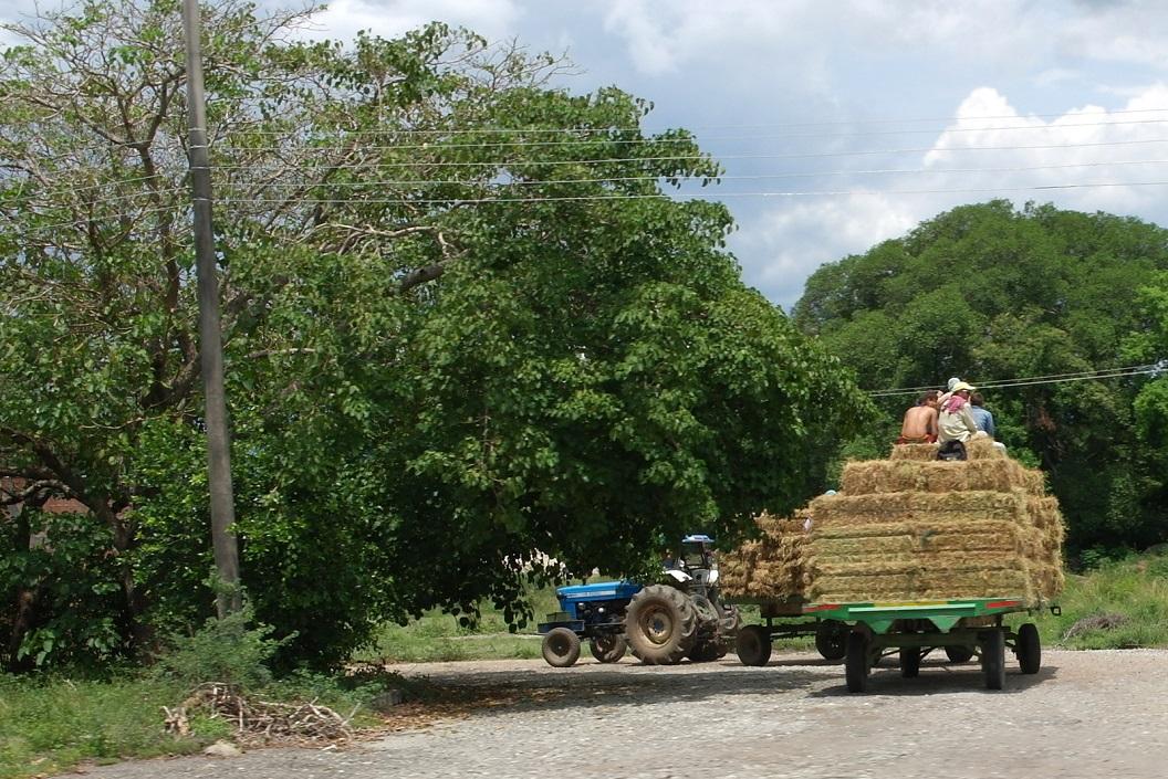 05 actief plattelandsleven op de route naar Medellin