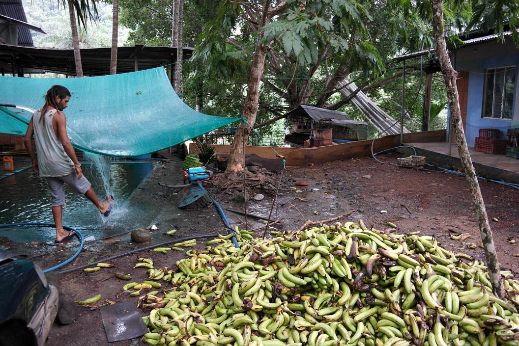 10 Matias bij de bananen opslag van het wegrestaurantje SAM_4669