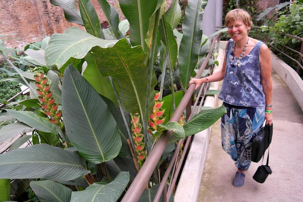 03 entree in de vlindertuin - Jardin de Mariposas SAM_4793