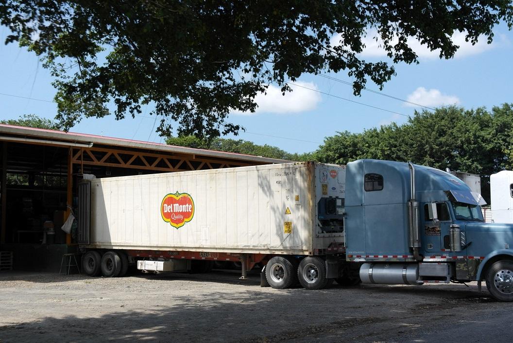 08 en groot transport - bananen van Del Monte (op onze route naar Parismina)SAM_5054