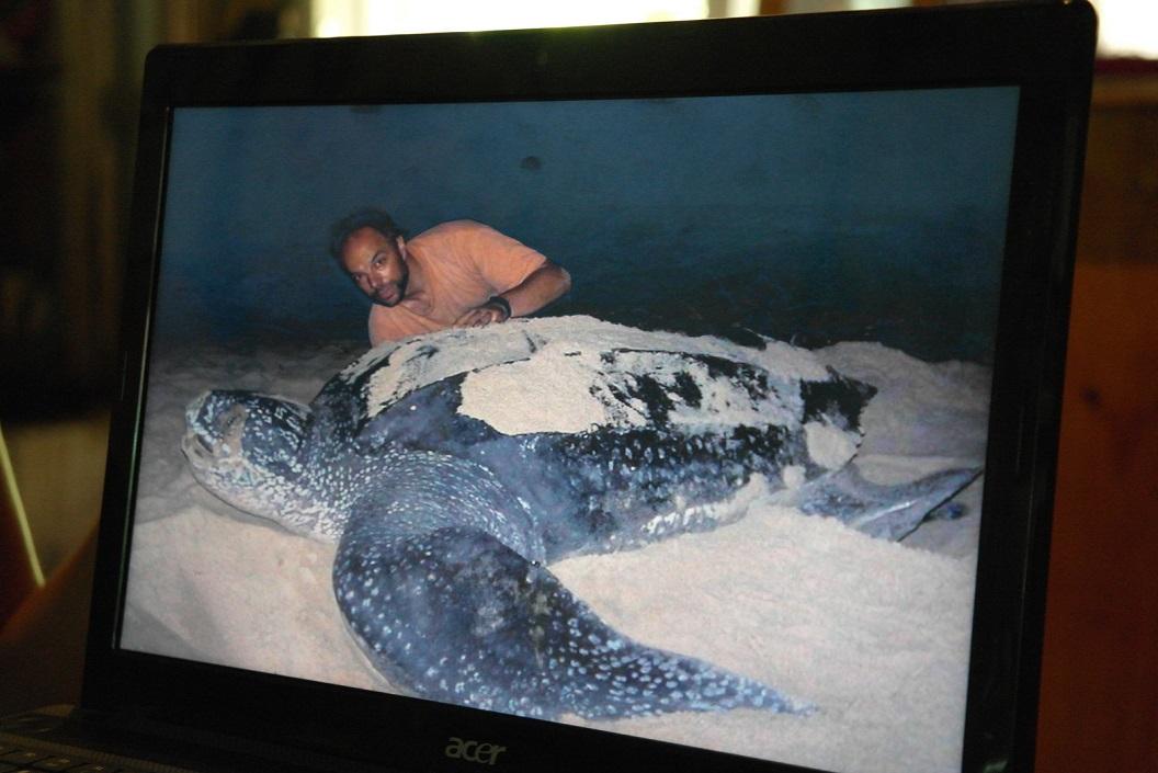 07 opmeten van de schildpadden bij aankomst op het strand, dit alles in het pikkedonker bij zaklamp met rood licht - tijdens patrouilles géén fotos maken SAM_5120