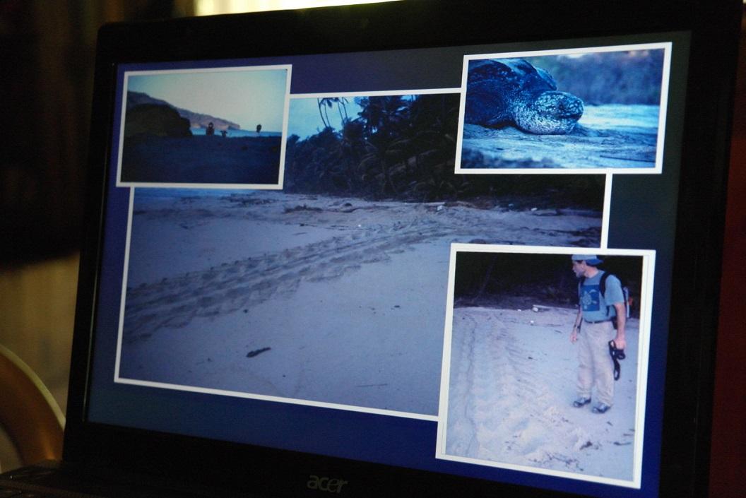 13 de Leatherbackschildpadden laten op het strand sporen na als van tractoren SAM_5127