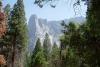 19 Cathedral Rocks - Yosemite National Park SAM_7480