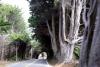 09 Highway 1 langs de kust is een prachtige route SAM_8075