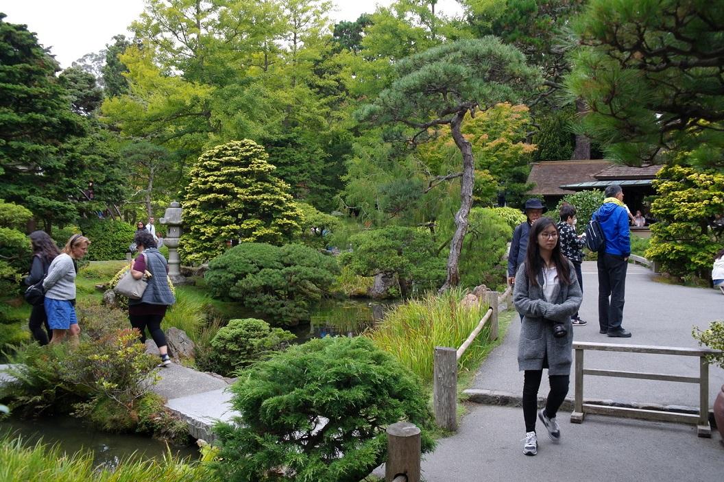32 de Japanese Tea Garden - San Francisco SAM_7943