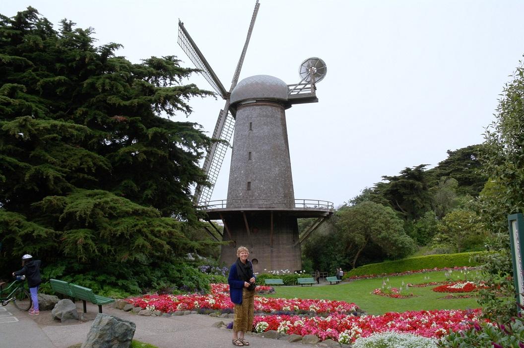 35 Dutch Windmill & Queen Wilhelmina Tulip Garden - nu vooral vol met begoniaatjes in Golden Gate Park - San Francisco CASAM_7976