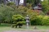 28 in Golden Gate Park van San Francisco - wandeling bij de Japanese Tea Garden SAM_7958