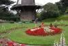 36 Dutch Windmill & Queen Wilhelmina Tulip Garden - Wim in gesprek en vol lof over deze prachtig verzorgde kleurige tuin S AM_7984