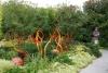 20 schitterende expositie - Garden and Glass - van Chihuly SAM_8573