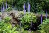 21 schitterende expositie - Garden and Glass - van Chihuly SAM_8576