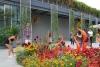 23 schitterende expositie - Garden and Glass - van Chihuly SAM_8601