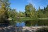 35 sfeervol park bij het apartement van Jennie in Bainbridge Island SAM_8775