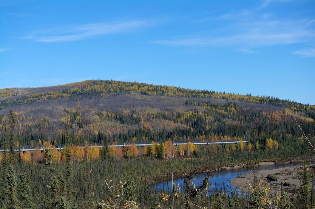 03 de Trans -Alaska Pipeline. In de leiding vloeit het zwarte goud van Arctica , de aardolie uit de velden van Prudhoe Bay aan de arctische kust SAM_0999