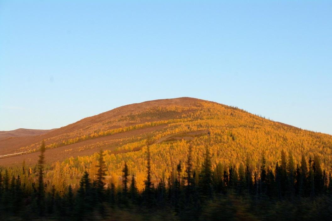 08 landschappen van zachte grote stiltes in Alaska SAM_1044