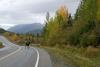 17 overstekende Moose - onderweg naar Valdez - Alaska SAM_1356
