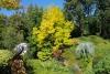 05 mengeling van zeldzame en exotische struiken, bomen en bloemen die vaak door de Butcharts tijdens hun uitvoerige wereldreizen vergaard werden SAM_8882