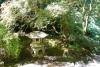 08 in de Japanse tuin SAM_8917