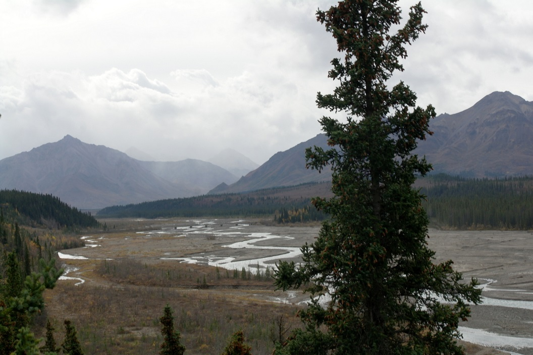 02 een van de vele rivieren dalen in Denali National Park SAM_1120