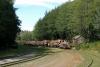 02 houtproductie bij Beaver Cove - Telegraph Cove - Vancouver Island SAM_9275