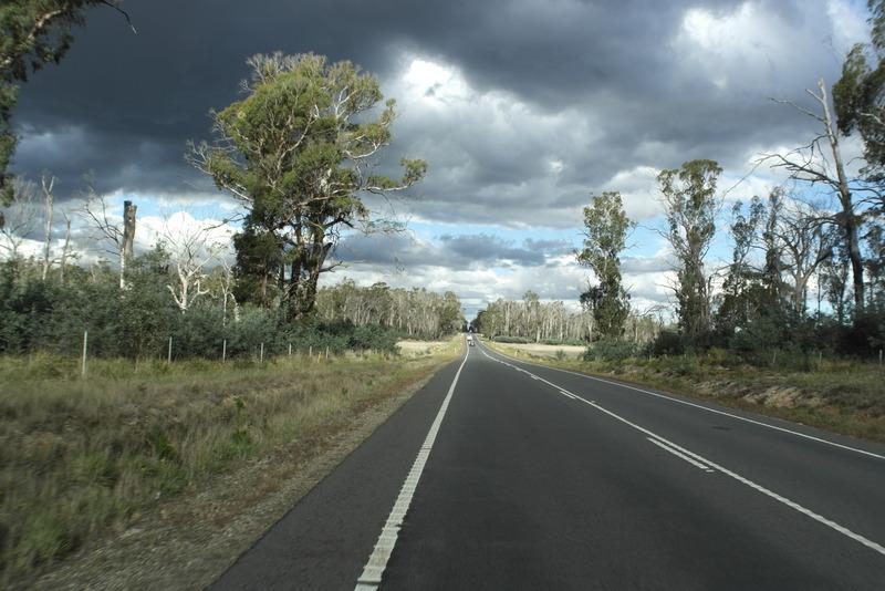 24-meer-bebossing