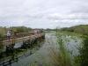 19 de Everglades is een enorm wetland – river off grass – dat in de zomer overstroomt en in de winter opdroogt